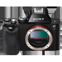 Sony - Alpha ILCE **** (Reflex)